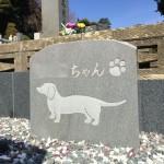 本小松石でペットのお墓を製作しました。